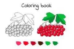 Livre de coloriage pour des enfants Illustration de vecteur berrie de viburnum illustration de vecteur