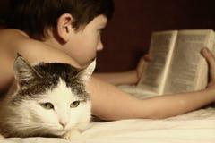 Livre de lecture de garçon d'adolescent dans le lit avec le chat de sommeil Images stock