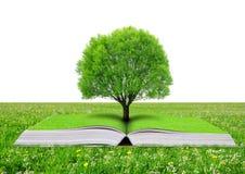 Livre de nature avec l'arbre Photos stock