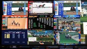Livre de sports Photographie stock libre de droits