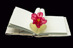 Livre en forme de coeur avec la fleur d'isolement sur le fond noir Image libre de droits