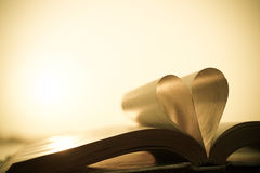 Livre et amour Photographie stock libre de droits