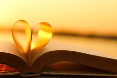 Livre et amour Photo stock
