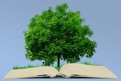 Livre et arbre Photo libre de droits