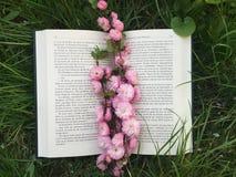 Livre et fleurs Photos stock