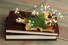 Livre et fleurs sèches Photo libre de droits
