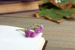 Livre et fleurs sèches Photographie stock libre de droits