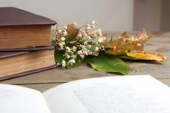 Livre et fleurs sèches Images libres de droits