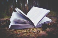 Livre et nature Photo stock