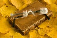 Livre et spectecles d'automne image stock