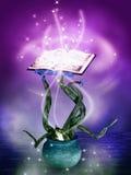 Livre magique de mystère Image stock