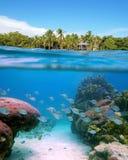 Livre-mergulho em Panamá Imagens de Stock