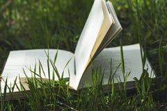 Livre sur l'herbe verte image libre de droits