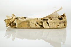 livre Termite-endommagé Images libres de droits