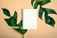 Livre vide de configuration plate pour la feuille du travail deux de conception sur la couleur en pastel jaune photographie stock