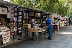 Livreiro de segunda mão em bancos do Seine Imagens de Stock