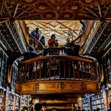 Livreria lello oporto one of the oldest library in Europe. The beauty of architecture. royalty free stock photos