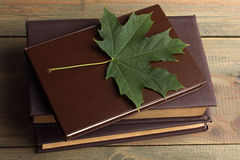 Livres avec des feuilles Images stock
