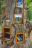 Livres dans des bibliothèques dans le tronc d'arbre en air extérieur Image libre de droits