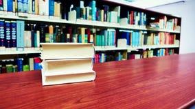 Livres dans la bibliothèque Images stock
