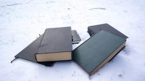 Livres dans la neige images stock