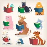 Livres de lecture d'animaux avec des histoires et traduire d'autres langues Essai de comprendre d'autres illustration libre de droits