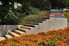 Livres et escaliers Photos libres de droits