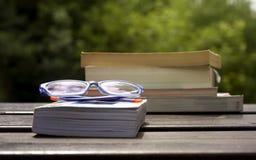 Livres et glaces Photos libres de droits
