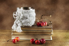 Livres et pommes de paradis Photos libres de droits