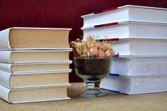 Livres et vase Photographie stock libre de droits