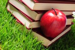 Livres sur l'herbe. Concept éducatif. Image libre de droits