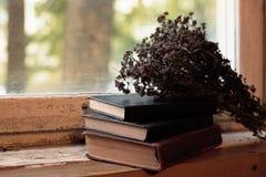 Livres sur le rebord de fenêtre et les fleurs sèches Photos libres de droits