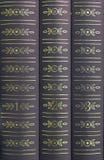 Livres sur une étagère Photographie stock libre de droits
