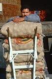 Livreur avec des sacs de pommes de terre Photographie stock libre de droits