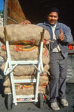 Livreur avec des sacs de pommes de terre Photo libre de droits