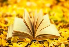 Livro aberto Foto de Stock