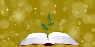 Livro aberto com broto da árvore Fotos de Stock Royalty Free