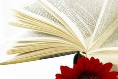Livro aberto com uma flor vermelha. Imagem de Stock