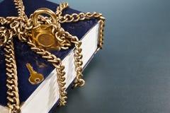 Livro com corrente dourada e fechamento Fotos de Stock Royalty Free