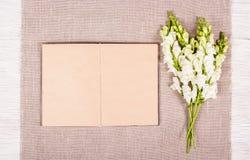 Livro com páginas vazias Fundo da textura Fundo romântico com livro e as flores abertos Fotos de Stock