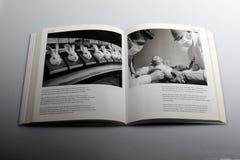 Livro da fotografia por Nick Yapp, veterinários que verificam a saúde do ` s do macaco Imagens de Stock Royalty Free