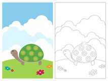 Livro da página da coloração - tartaruga Fotografia de Stock Royalty Free