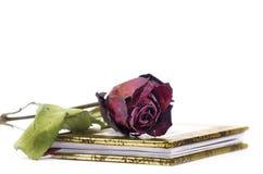 Livro da poesia Fotos de Stock