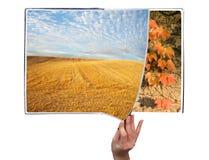 Livro das estações Imagem de Stock Royalty Free