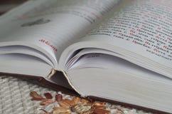 Livro de Christian Typicon imagem de stock royalty free