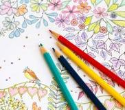 Livro de Colorer - antistress Imagens de Stock Royalty Free