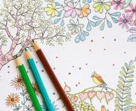 Livro de Colorer - antistress Fotografia de Stock Royalty Free
