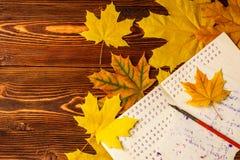 Livro de exercício de velha escola com uma pena de madeira da tinta e folhas de bordo amarelas em um fundo da madeira velha Um li Fotos de Stock Royalty Free