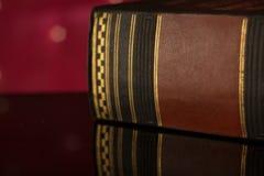 Livro de lei velho Imagem de Stock