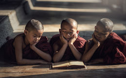 Livro de leitura da monge do principiante foto de stock
